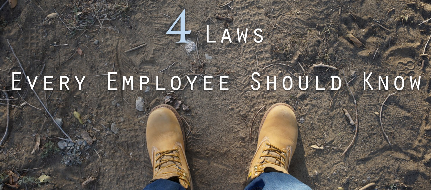 4 Laws Every Employee Should Know
