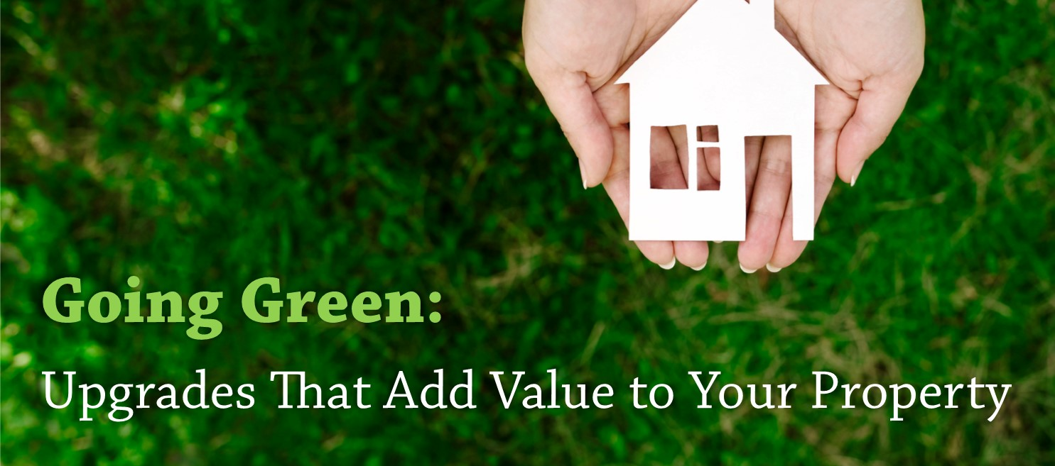 Going Green: Upgrades That Add Value to Your Property